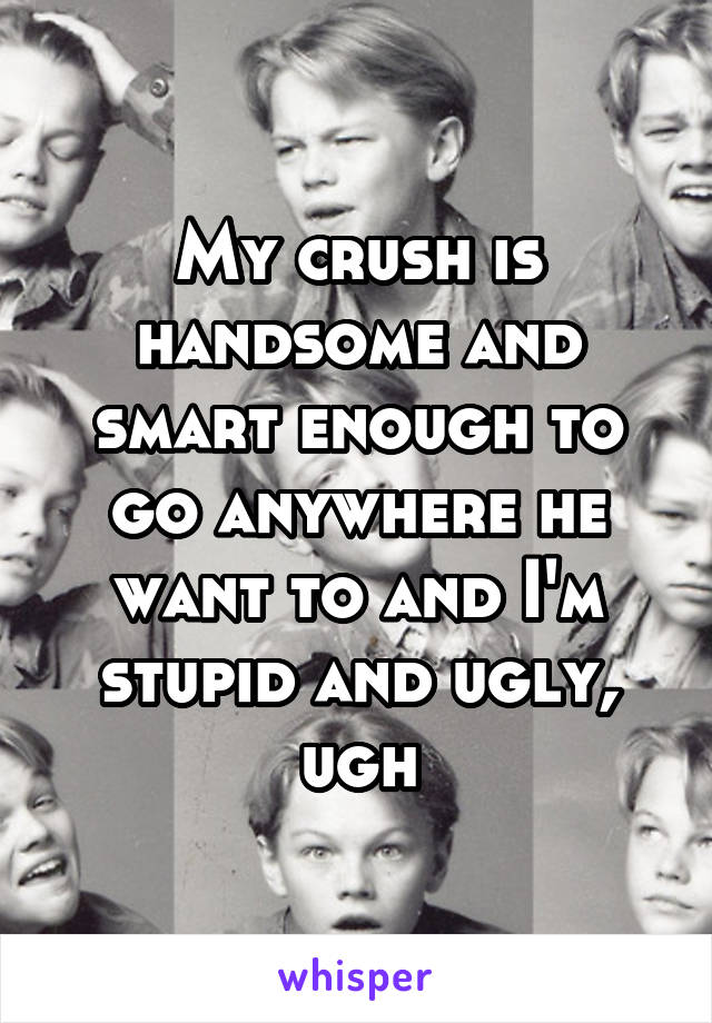 My crush is handsome and smart enough to go anywhere he want to and I'm stupid and ugly, ugh