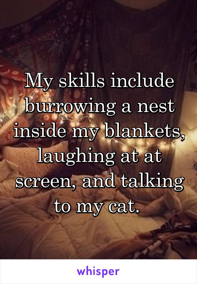 My skills include burrowing a nest inside my blankets, laughing at at screen, and talking to my cat.