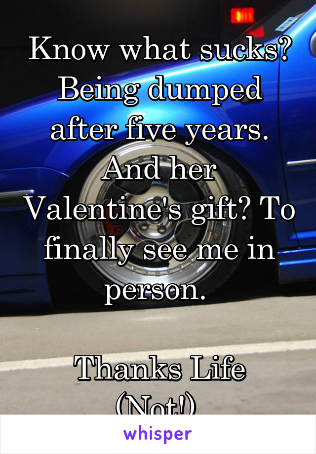 Know what sucks? Being dumped after five years. And her Valentine's gift? To finally see me in person.   Thanks Life (Not!).