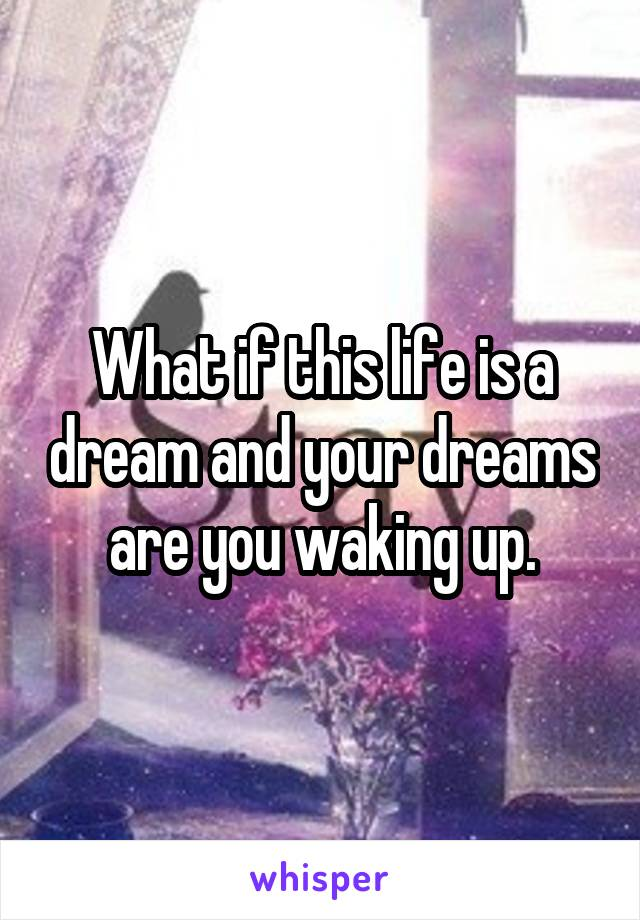 What if this life is a dream and your dreams are you waking up.