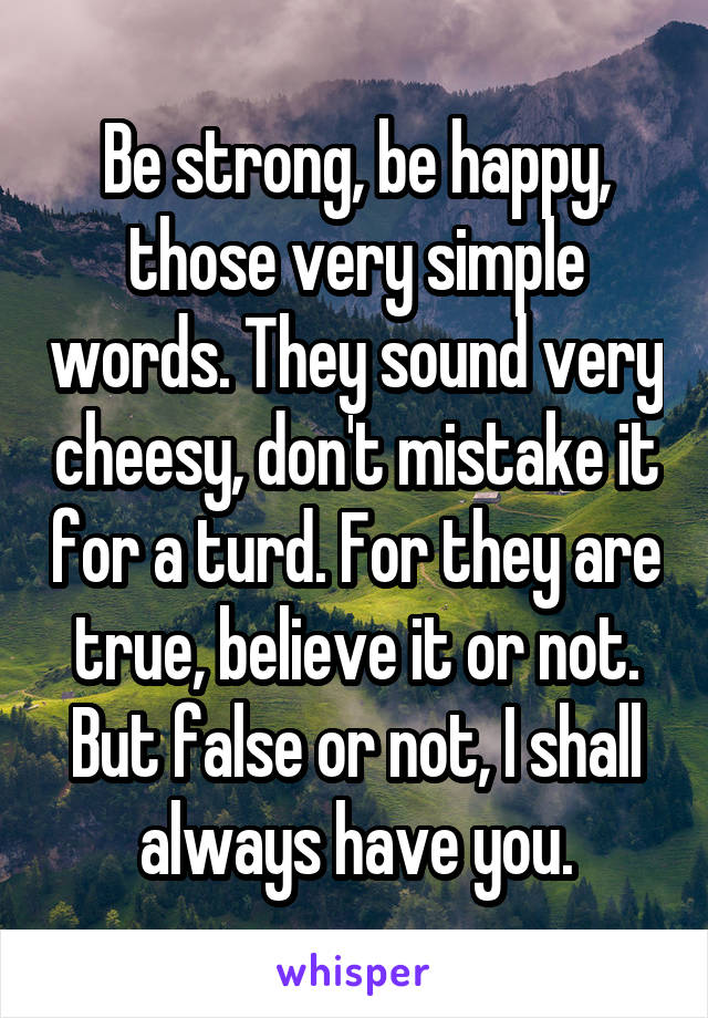 Be strong, be happy, those very simple words. They sound very cheesy, don't mistake it for a turd. For they are true, believe it or not. But false or not, I shall always have you.