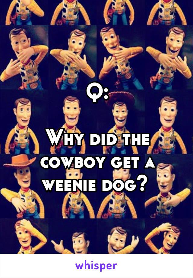 Q:  Why did the cowboy get a weenie dog?
