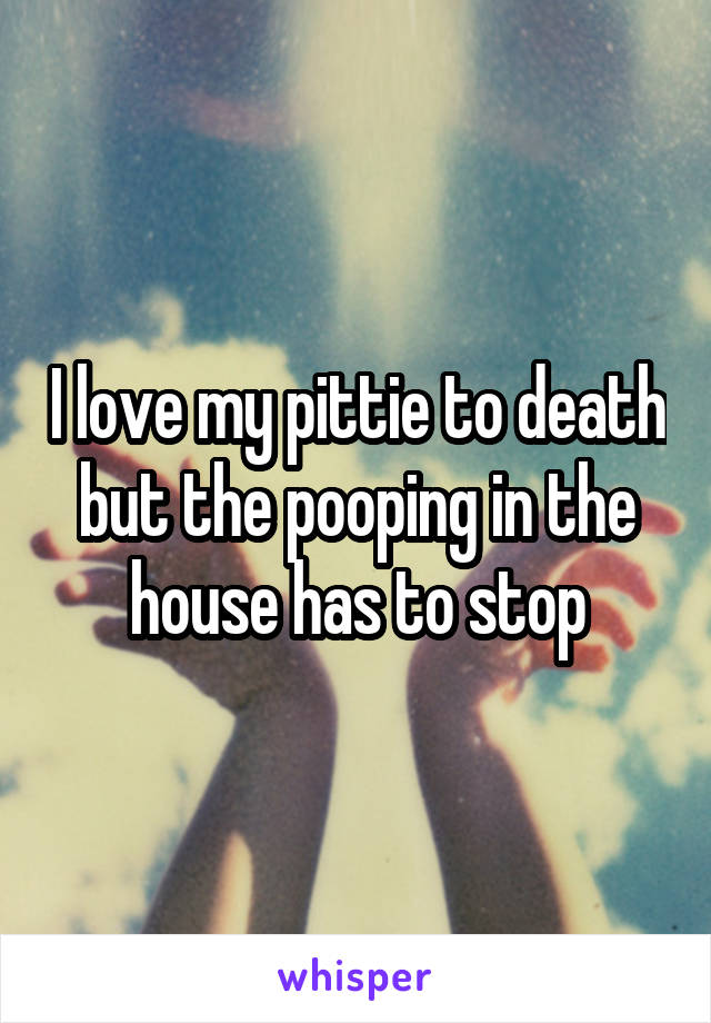 I love my pittie to death but the pooping in the house has to stop