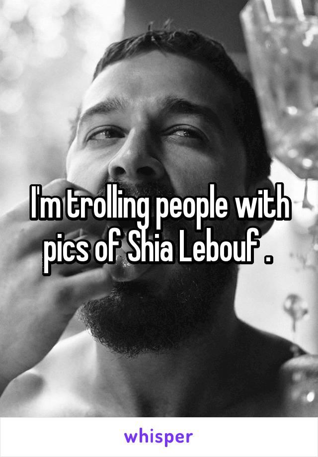I'm trolling people with pics of Shia Lebouf .