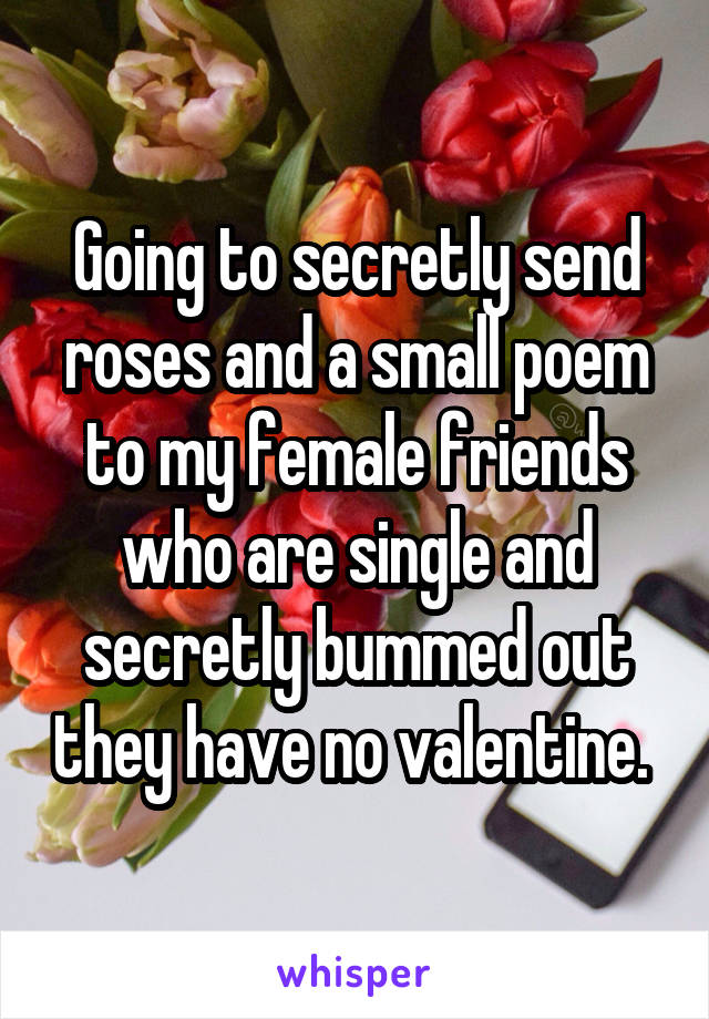 Going to secretly send roses and a small poem to my female friends who are single and secretly bummed out they have no valentine.