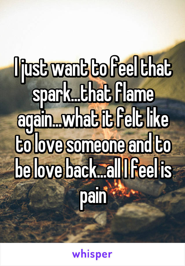 I just want to feel that spark...that flame again...what it felt like to love someone and to be love back...all I feel is pain