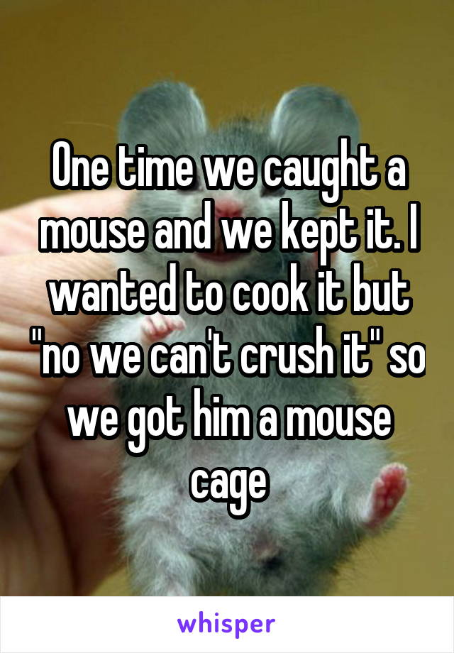 """One time we caught a mouse and we kept it. I wanted to cook it but """"no we can't crush it"""" so we got him a mouse cage"""