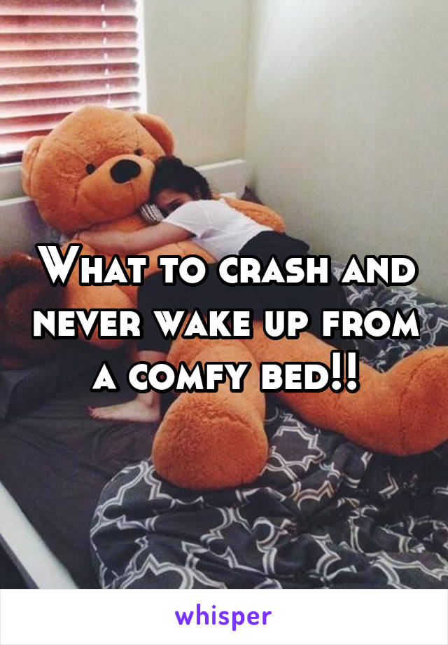 What to crash and never wake up from a comfy bed!!