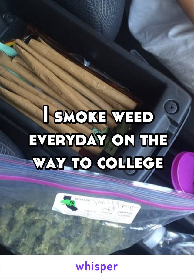 I smoke weed everyday on the way to college