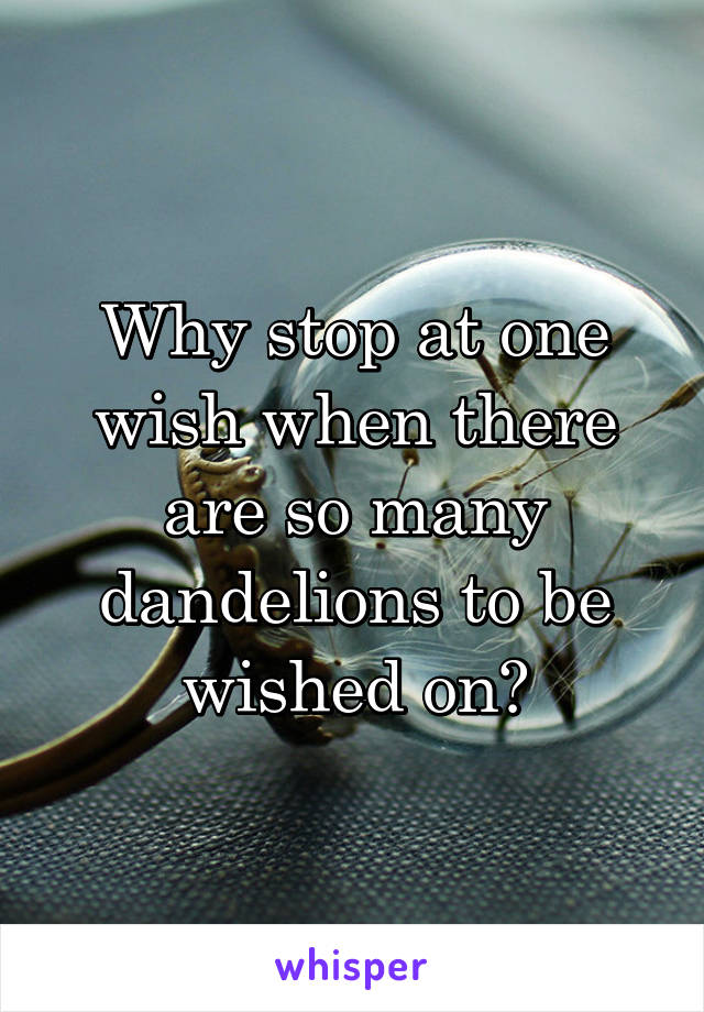 Why stop at one wish when there are so many dandelions to be wished on?