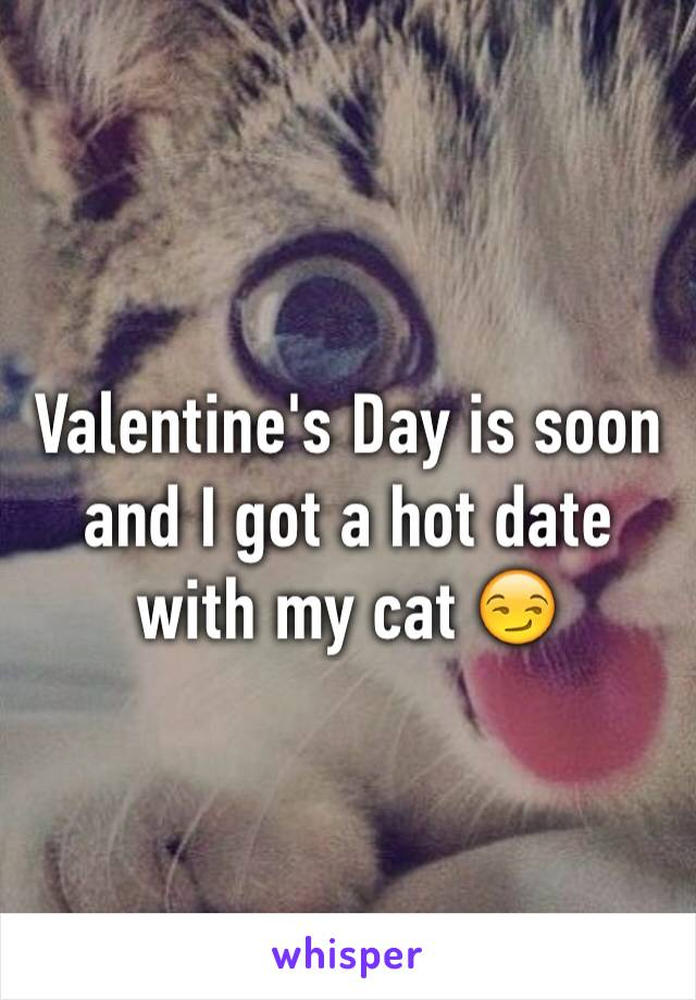 Valentine's Day is soon and I got a hot date with my cat 😏