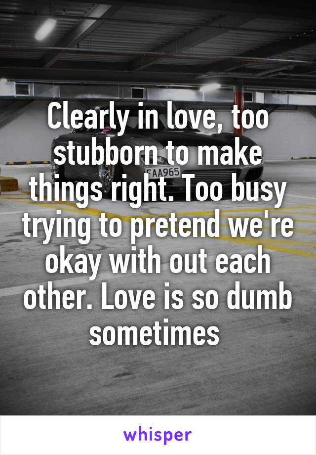 Clearly in love, too stubborn to make things right. Too busy trying to pretend we're okay with out each other. Love is so dumb sometimes
