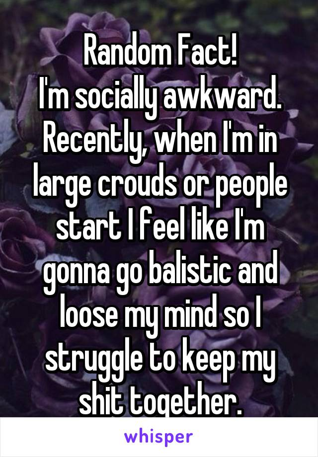 Random Fact! I'm socially awkward. Recently, when I'm in large crouds or people start I feel like I'm gonna go balistic and loose my mind so I struggle to keep my shit together.