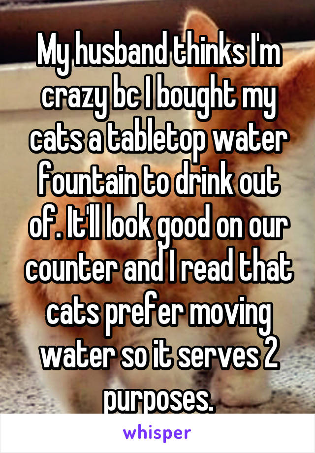 My husband thinks I'm crazy bc I bought my cats a tabletop water fountain to drink out of. It'll look good on our counter and I read that cats prefer moving water so it serves 2 purposes.