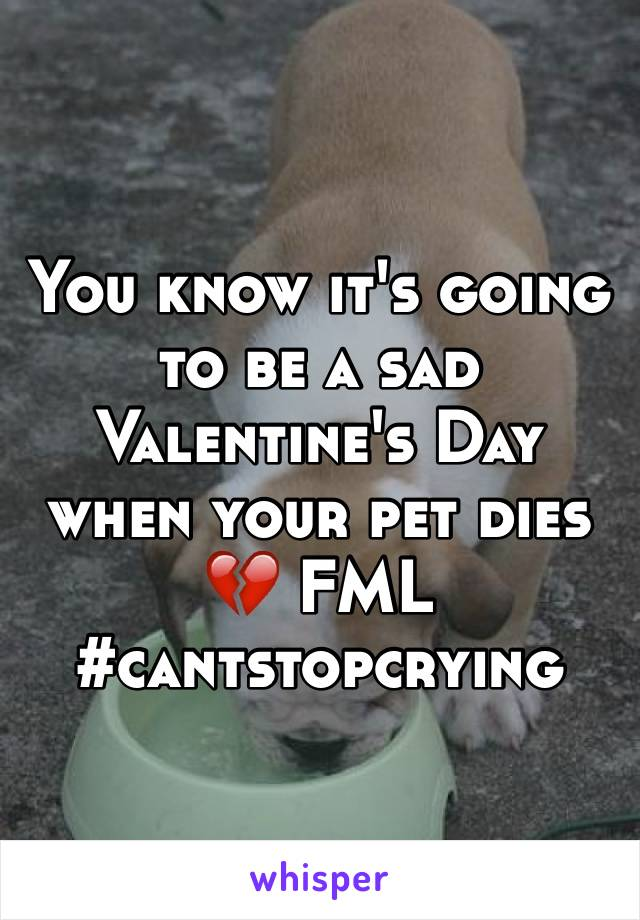 You know it's going to be a sad Valentine's Day when your pet dies 💔 FML #cantstopcrying