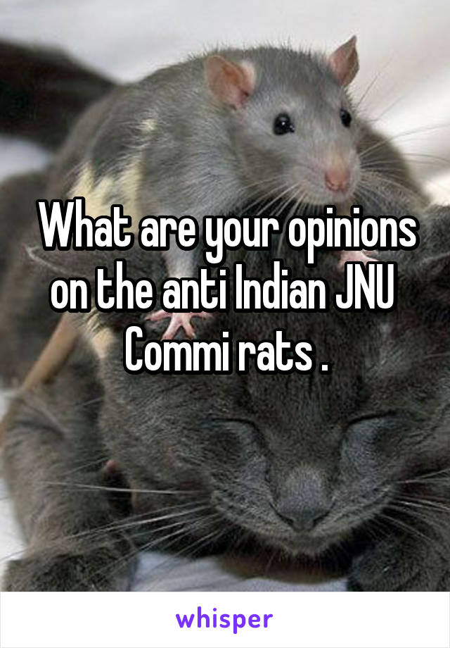 What are your opinions on the anti Indian JNU  Commi rats .