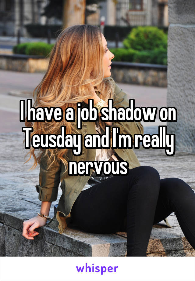 I have a job shadow on Teusday and I'm really nervous