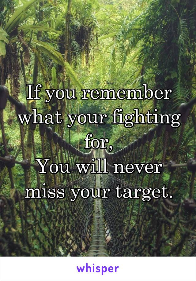 If you remember what your fighting for, You will never miss your target.