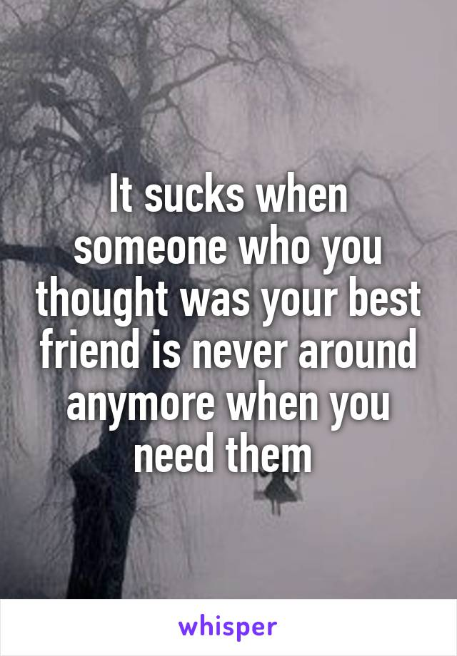 It sucks when someone who you thought was your best friend is never around anymore when you need them