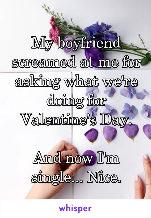 My boyfriend screamed at me for asking what we're doing for Valentine's Day.  And now I'm single... Nice.