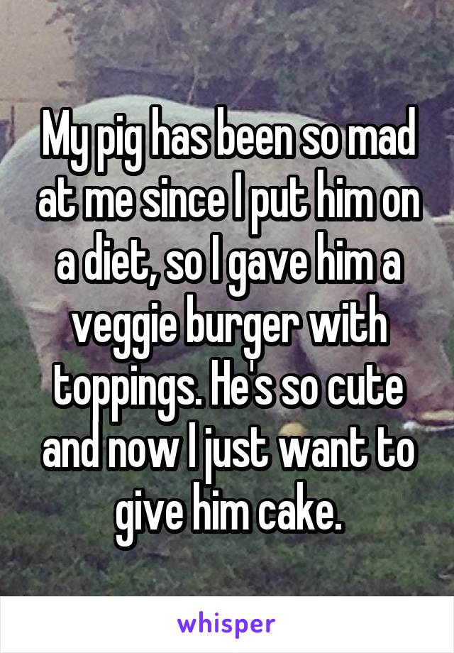My pig has been so mad at me since I put him on a diet, so I gave him a veggie burger with toppings. He's so cute and now I just want to give him cake.