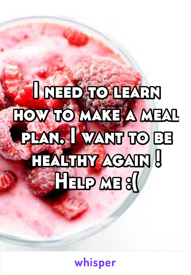 I need to learn how to make a meal plan. I want to be healthy again ! Help me :(