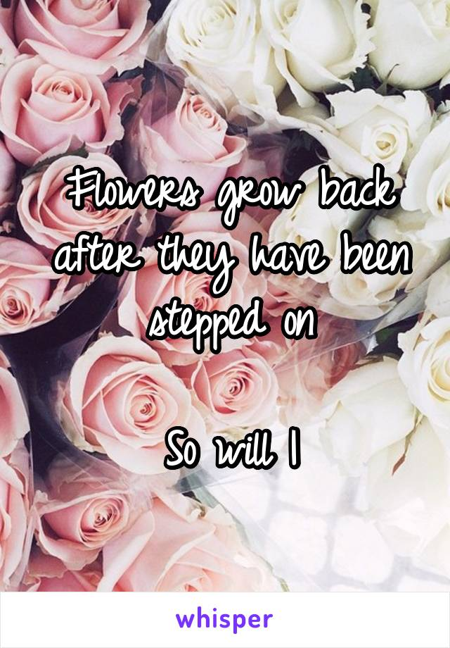 Flowers grow back after they have been stepped on  So will I