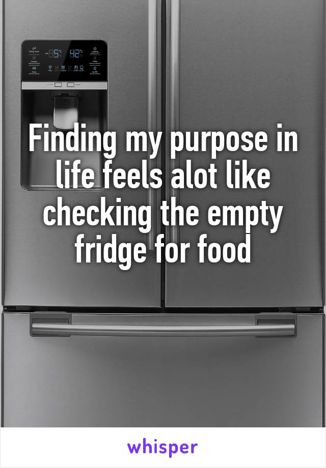 Finding my purpose in life feels alot like checking the empty fridge for food