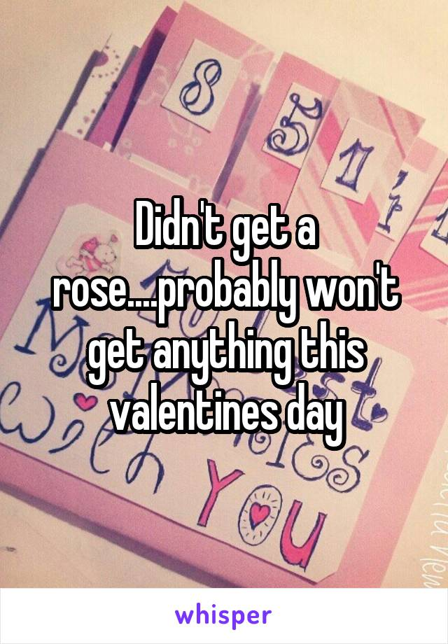 Didn't get a rose....probably won't get anything this valentines day