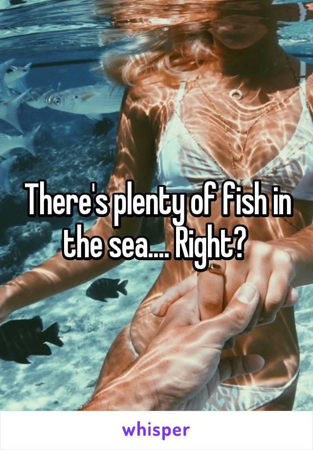 There's plenty of fish in the sea.... Right?