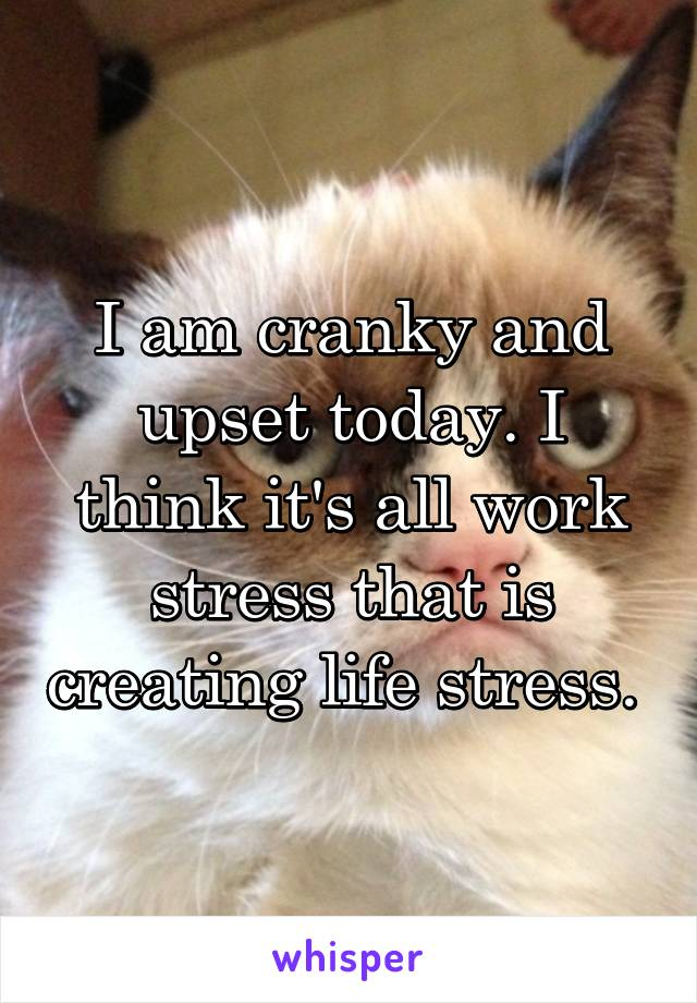 I am cranky and upset today. I think it's all work stress that is creating life stress.
