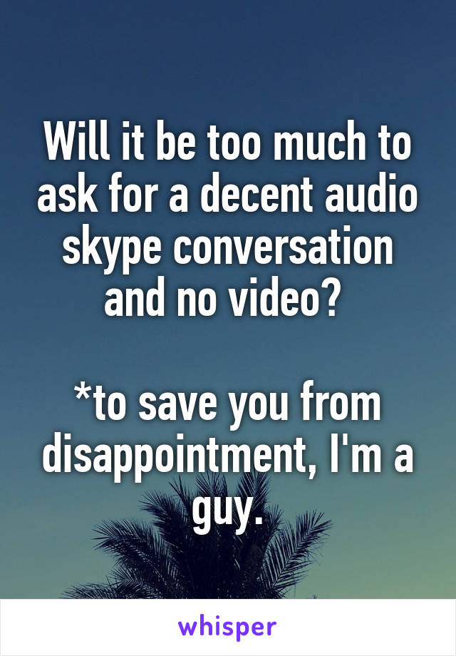 Will it be too much to ask for a decent audio skype conversation and no video?   *to save you from disappointment, I'm a guy.