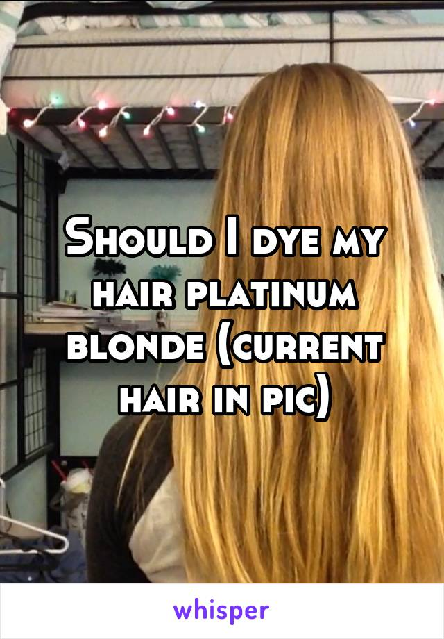 Should I dye my hair platinum blonde (current hair in pic)