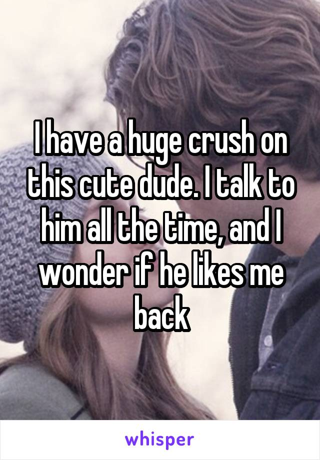 I have a huge crush on this cute dude. I talk to him all the time, and I wonder if he likes me back
