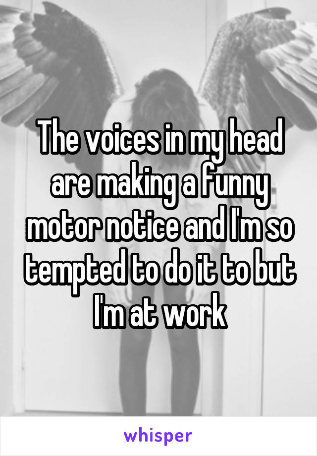 The voices in my head are making a funny motor notice and I'm so tempted to do it to but I'm at work