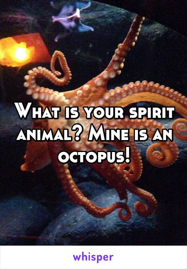 What is your spirit animal? Mine is an octopus!