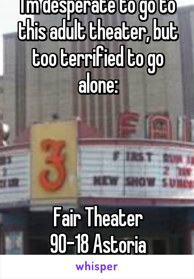I'm desperate to go to this adult theater, but too terrified to go alone:     Fair Theater 90-18 Astoria Boulevard