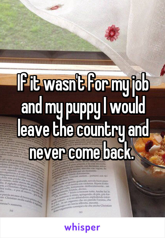 If it wasn't for my job and my puppy I would leave the country and never come back.