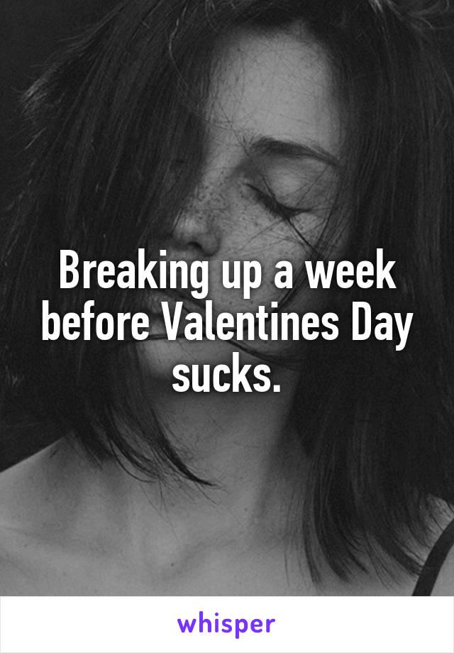 Breaking up a week before Valentines Day sucks.