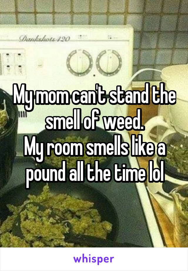 My mom can't stand the smell of weed. My room smells like a pound all the time lol