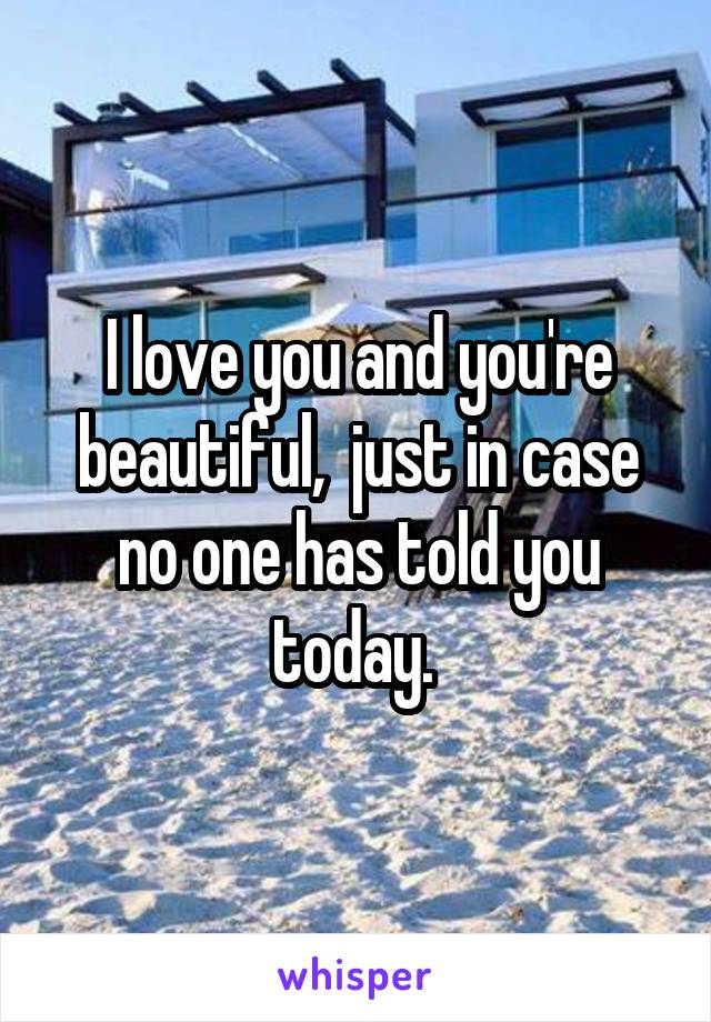 I love you and you're beautiful,  just in case no one has told you today.