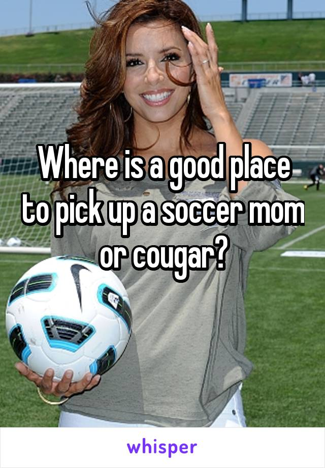Where is a good place to pick up a soccer mom or cougar?