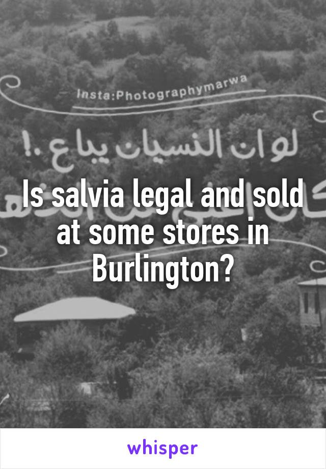 Is salvia legal and sold at some stores in Burlington?