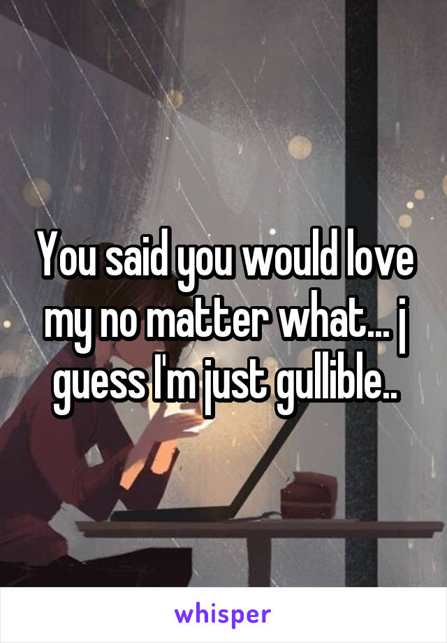 You said you would love my no matter what... j guess I'm just gullible..