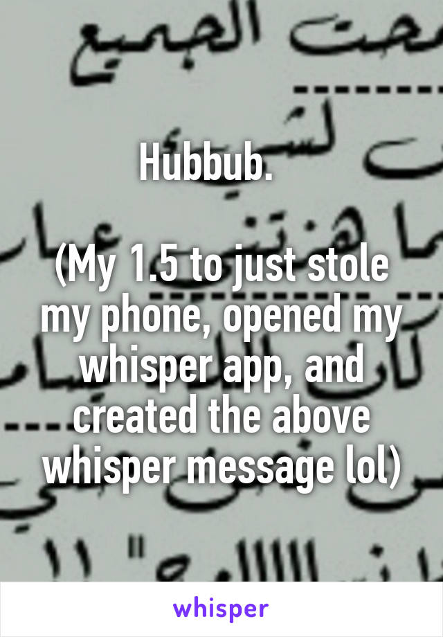 Hubbub.     (My 1.5 to just stole my phone, opened my whisper app, and created the above whisper message lol)