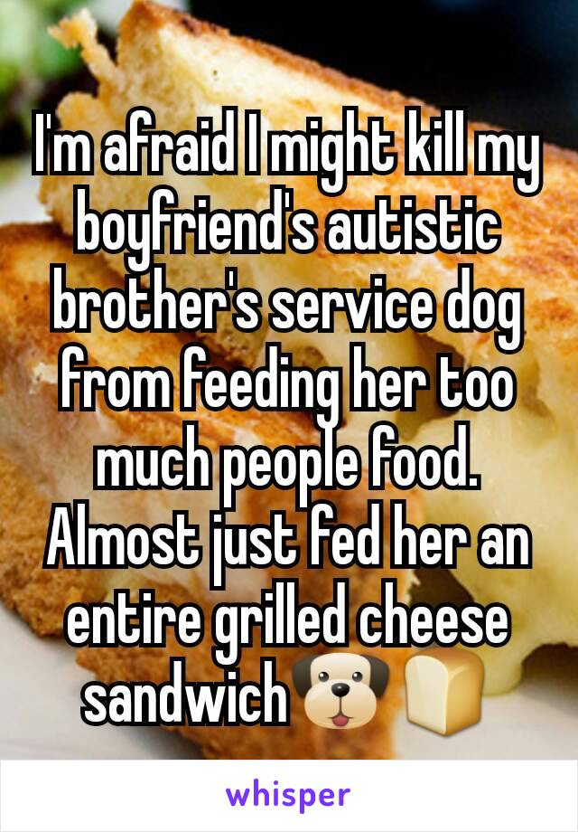 I'm afraid I might kill my boyfriend's autistic brother's service dog from feeding her too much people food. Almost just fed her an entire grilled cheese sandwich🐶🍞