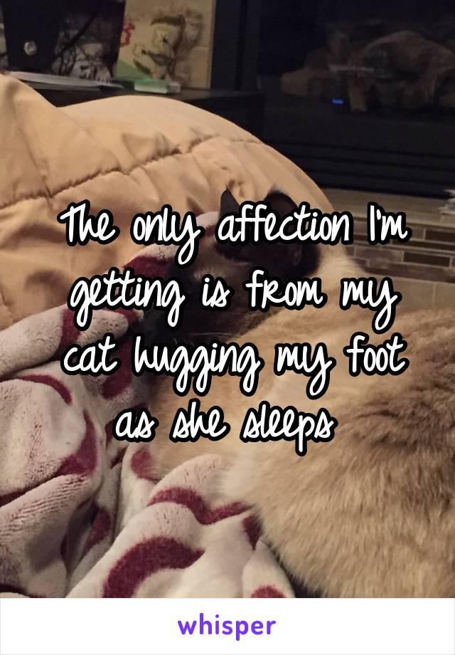 The only affection I'm getting is from my cat hugging my foot as she sleeps