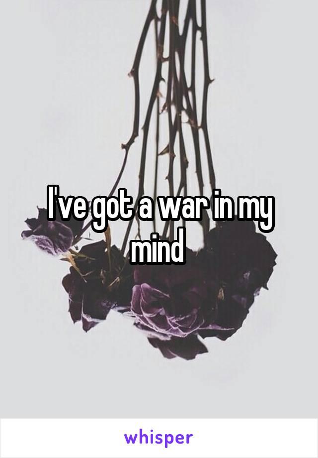I've got a war in my mind