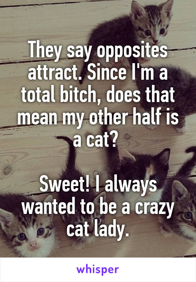 They say opposites attract. Since I'm a total bitch, does that mean my other half is a cat?   Sweet! I always wanted to be a crazy cat lady.
