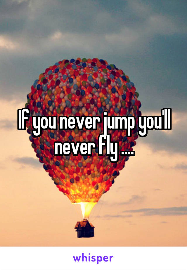 If you never jump you'll never fly ....